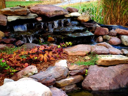 water feature: Water feature with rocks, ornamental plants, and flowing waterfall.