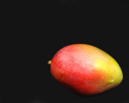 Single mango fruit isolated on a black background.