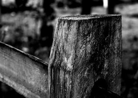 split rail: Black and white image of a split rail fence post and rail.