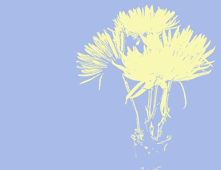 Abstract chrysanthemums in spring colors, yellow on a light blue background. Imagens