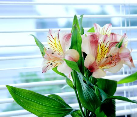 Arrangement of silk flowers next to a window with sunlight filtered through the blinds.