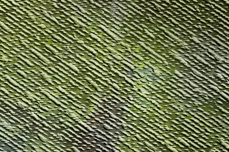 variegated: Green raised textured abstract image for backgrounds or wallpaper.