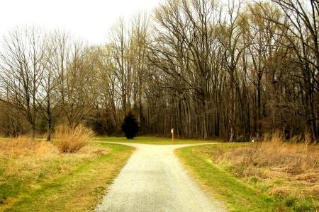 split road: Country road.