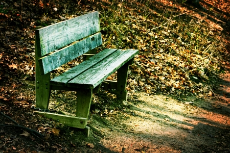 Rustic, weathered wooden bench along side a trail in a forest.