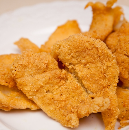 fried fish: Southern Style Fried Fish