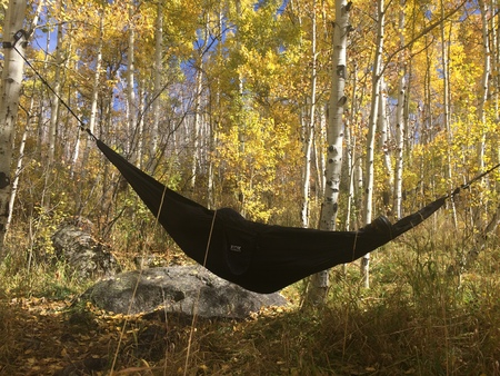 tied in: napping in a hammock tied to beautiful aspens to the sounds of nature