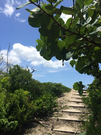 man made: man made wood stairs leading to sandy beach on tropical island Stock Photo