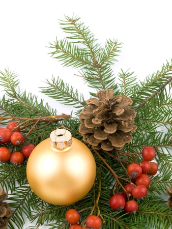 glas bal: Closeup picture of golden glass ball, fresh spruce, rowan and cones on white background