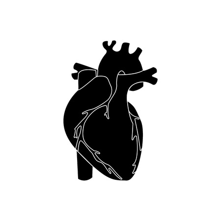 left ventricle: Human heart black color  isolated. vector illustration Illustration