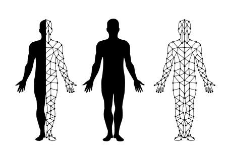 silueta humana: vector cuerpo aislante y malla de cuerpo. ilustración vectorial.