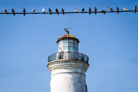 birds on a wire: Old lighthouse and birds on wire