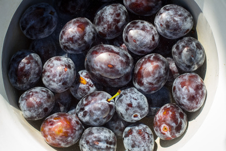 dozens: Dozens of ripe plums in a bowl of water Stock Photo