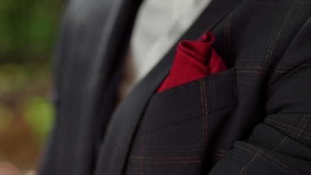 Closeup male hands touching handkerchief. Unrecognizable man preparing for wedding ceremony. Unknown businessman touching bow tie in garden. Stok Fotoğraf