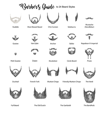 Barbers guide for beard styles vector