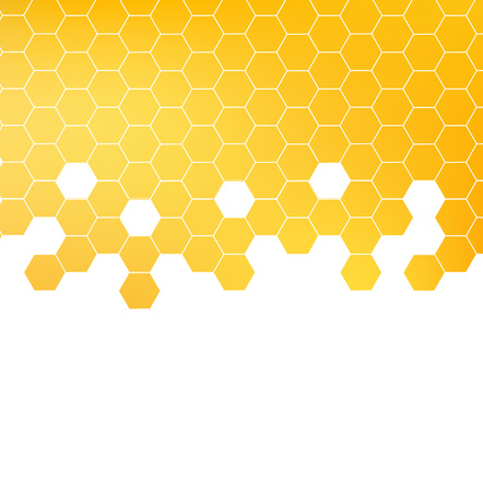 Honey pattern vector