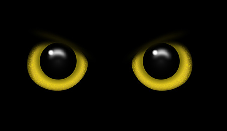 Yellow eyes on a black background vector