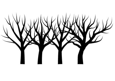 Bare trees vector illustration Illustration