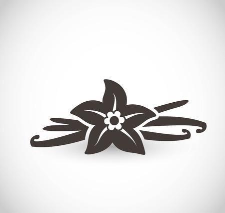 Icona di vettore di vaniglia