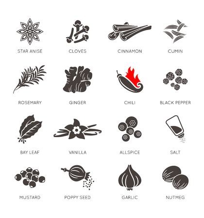 Spices icon vector set, collection