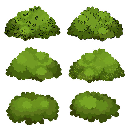 Set of green bushes vector