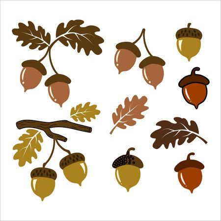 Ilustración de vector de bellota set art