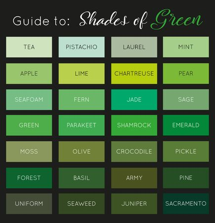 Guide to Shades of Green vector Illustration