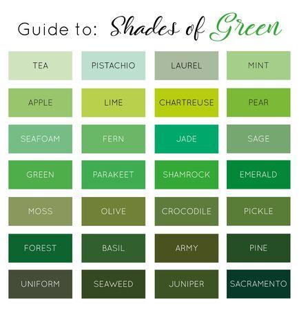 Guida alle sfumature di verde vettoriale Vettoriali