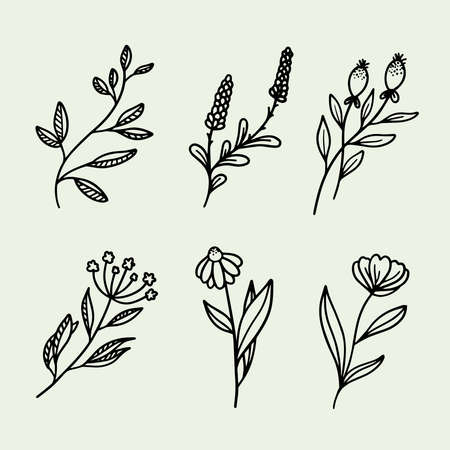 Beautiful, cute set of hand drawn flowers and branches vector