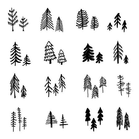 Beautiful set of hand drawn pine trees vector collection Vectores
