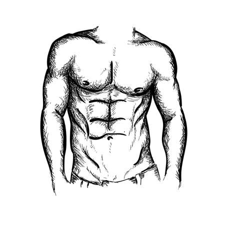 Hand drawn fitness male muscular body vector illustration