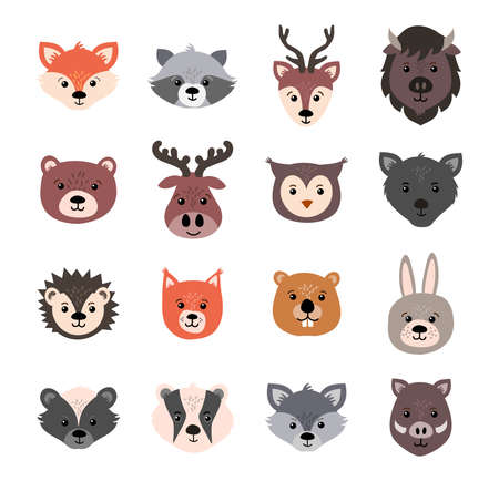 Beautiful set of child style woodland animals vector collection