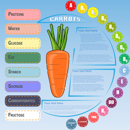 Cibo vegetariano. Vector infographic per il contenuto di vitamine e minerali in carote. Monochrome carota arancione disegnata con i simboli di vitamine e minerali. Illustrazione vettoriale isolato su blu Vettoriali