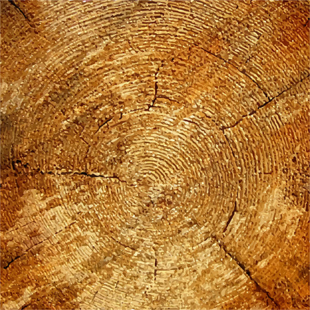 sawing: Wood texture Tree rings,  sawing wood.  Illustration