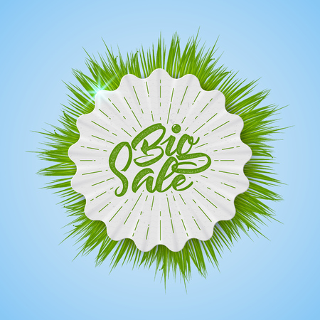 sale tags: Big Sale spring insignia  and labelsIt can be used for design, shares for sale