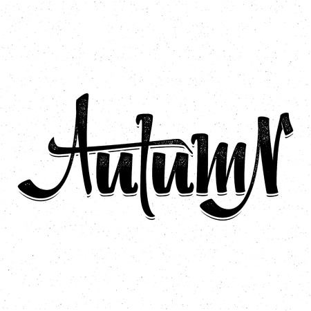 accordance: Autumn poster. Badge drawn by hand, using the skills of calligraphy and lettering, collected in accordance with the rules of typography . Illustration