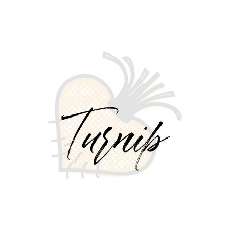Turnip word on background illustration. Fruit web element, Isolated Vector Stock Illustratie