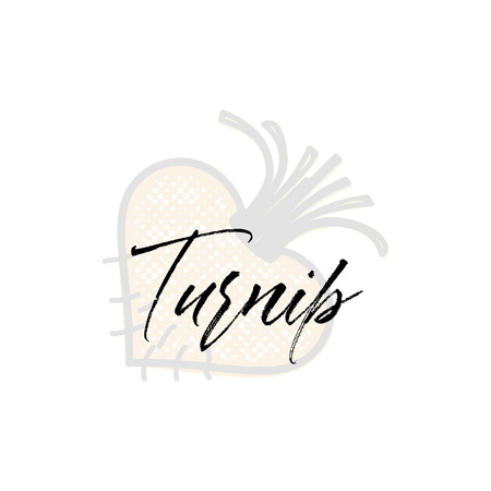 Turnip word on background illustration. Fruit web element, Isolated Vector Иллюстрация