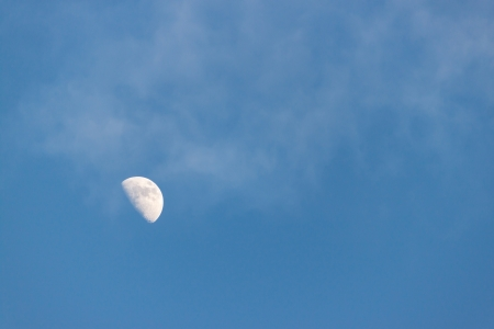 the half moon with blue sky in evening photo