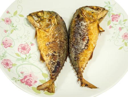 mackerel fried photo