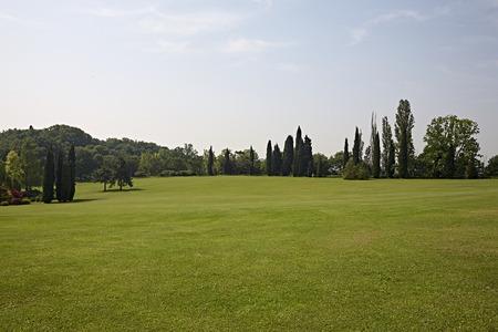 whit: green park whit grass Inglese