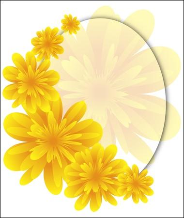 turn yellow: Yellow flower