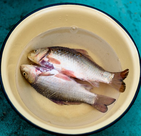 purified: Purified fish is in a dish preparing for frying Stock Photo