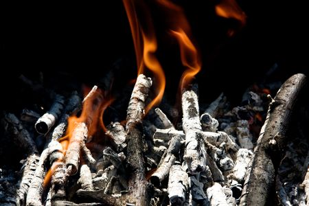 burning branch in tongues of flame photo