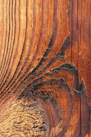 The texture of the old weathered pine boards Stock Photo - 5732940