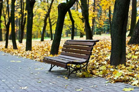 The yellow leaf has fallen to a garden bench Stock Photo