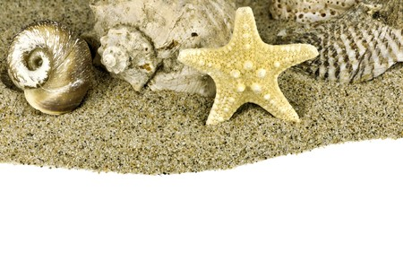 beach sand and sea shell with copyspace Stock Photo