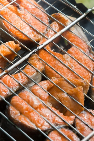 Grilled salmon on the barbeque photo