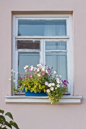 Windows with flowerboxes photo