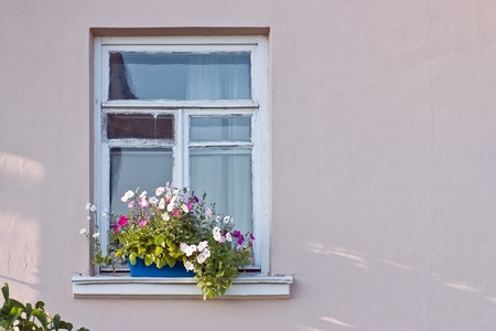 Window decorated with flowers photo