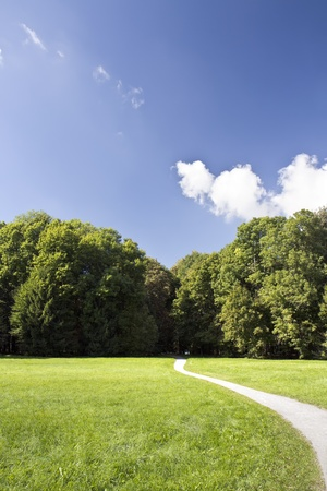 Summer landscape with green trees and a bright blue sky photo